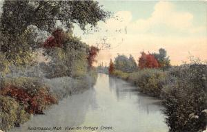Kalamazoo Michigan~Portage Creek View in Coutry~1911 Postcard