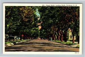 Carlsbad NM, Canal Street Looking North Vintage New Mexico c1930 Postcard