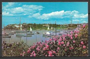 Massachusetts, Cape Cod - Wychmere Harbor - [MA-279]