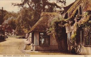 BURLEY, England, 1900-1910's; New Forest, Ringwood Road, Tea Room