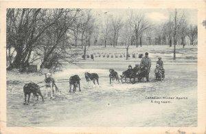 br105048 canadian winter sports a dog team canada ottawa