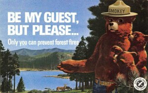 SMOKEY THE BEAR Only You Can Prevent Forest Fires c1960s Vintage Postcard