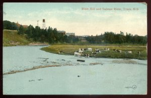 h2348 - TRURO NS Postcard 1900s Bible Hill & Salmon River
