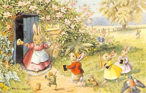Racey Helps Fantasy~Late Scholars Miss Bun's Academy~Bunny Rabbits~Frog~Medici