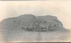 F92/ Occupational RPPC Postcard c1910 Harvesting Loading Hay Wagon Farm 9
