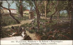 Macedonia Greece Cemetery c1910 Postcard