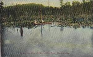 Alabama Marion Fishing on One of The Lakes