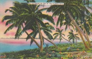 Florida Daybreak On One Of The Florida Keys
