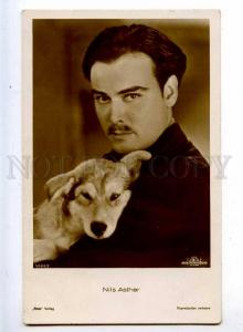 216056 Nils ASTHER Hollywood MOVIE Film Actor DOG old PHOTO