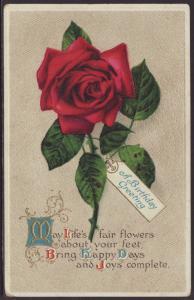 Birthday Greetings,Rose Postcard