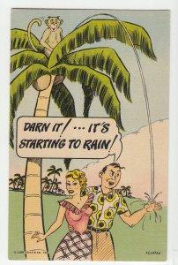 P2207, old comic postcard monkey palm tree darn it, its starting to rain unused