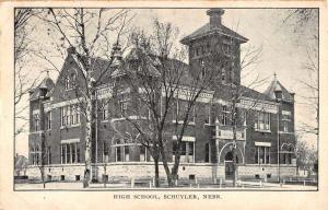 Schuyler Nebraska High School Street View Antique Postcard K87437