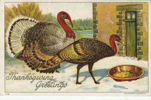 THANKSGIVING , 00-10s; Embossed Wild Turkeys