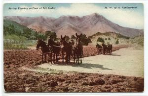 Spring Plowing Teams Farming Mt Cedar MWA Sanitorium Colorado 1910c postcard