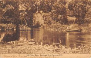 Ravenna Ohio Cuyahoga River Old Feeder Dam Antique Postcard K92831