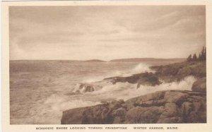 Maine Winter Harbor Schoodic Shore Looking Toward Grindstone Albertype