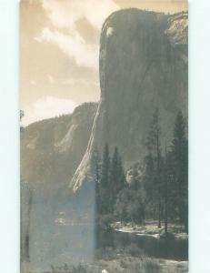 Old rppc NATURE SCENE Great Postcard AB0807