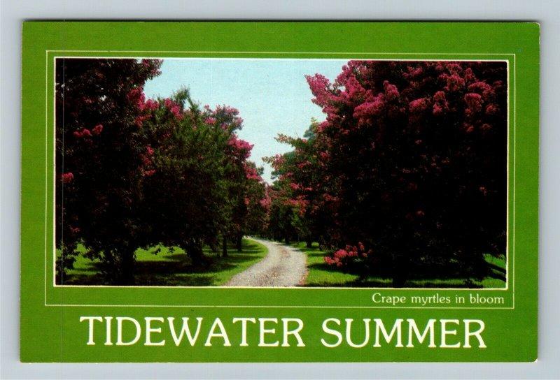 Tidewater VA- Virginia, General Greetings, Chrome Postcard