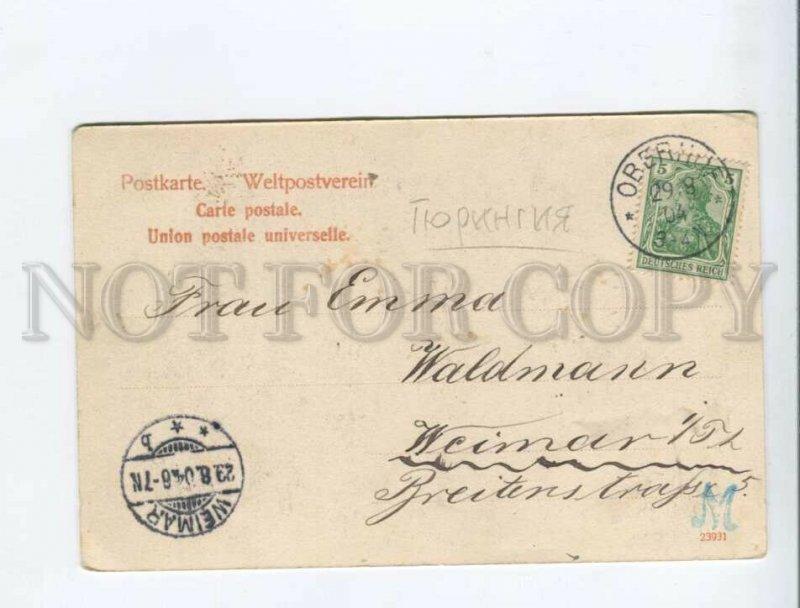 3171976 GERMANY GRUSS aus Oberhof Vintage postcard DEER HUNT