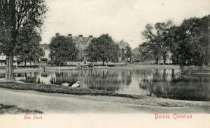 UK - England, Barnes Common and Pond