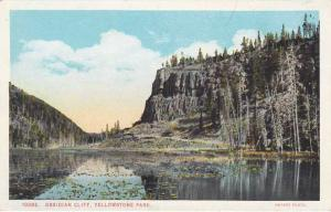 Obsidan Cliff - Yellowstone National Park - Wy Wyoming WB