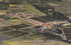 New Jersey Bridgeton View Of Seabrook Farms