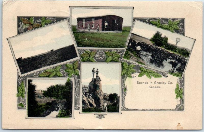 1909 Kansas Postcard Scenes in Greeley County Sod House Cattle Hand-Colored