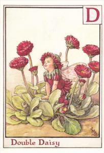 The Double Daisy Fairy , 1995