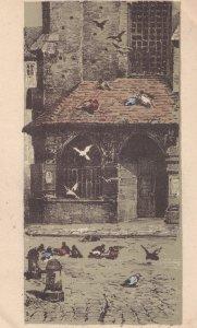 Krakow Barbary Angry Birds Vintage Polish Postcard