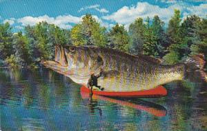 Fishing Giant Fish On Top Of Canoe