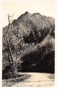 C74/ Great Smoky Mountains National Park Tennessee Postcard RPPC Chimney Top 24