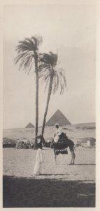 RP: EGYPT , 00-10s ; Cairo , Pyramids of Chiffren