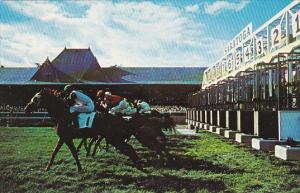 Start Of The Race Saratoga Race Track New York Horse Racing