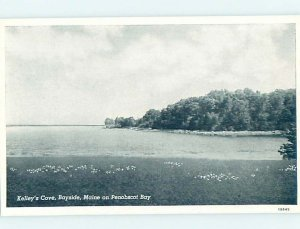 1940's NATURE Bayside At East Northport - Near Belfast & Lincolnville ME AD3538
