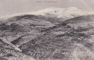 Broumanah Vallee De Syrie Lebanon Antique Postcard
