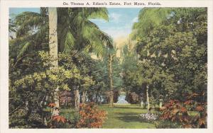 In The Garden Winter Home Of Thomas A Edison Fort Myers Florida