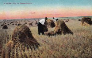 SASKATCHEWAN, Canada, 00-10s, Men Working on a Wheat Field