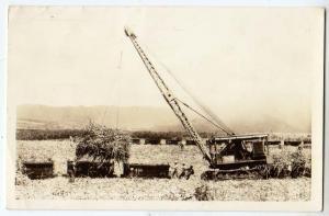RPPC, Loading Sugar Cane in the Field