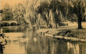 Millburn New Jewsey~View Of Park~Willow Tree~Bridge~Birds~1920s Sepia PC