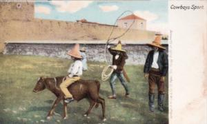 Cowboy Sport Roping A Cow