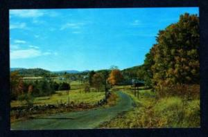 NY Greetings from FREEHOLD NEW YORK Postcard PC