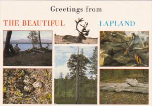 Finland Greetings From The Beautiful Lapland