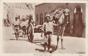 RP: Camel Carts , Aden , Yemen , 10-30s