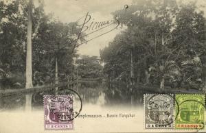 mauritius maurice, PAMPLEMOUSSES, Bassin Farquhar (1906) Postcard