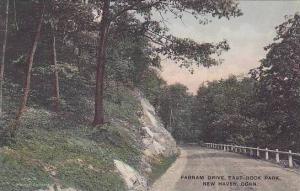 Connecticut New Haven Farnam Drive East Rock Park Albertype