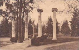 Washington Seattle Historic Columns University Of Washington Albertype