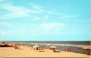 1960s Ocean City Maryland Greetings From Brueckmann Postcard FG