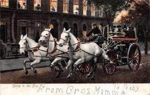 Going to the Fire~Team of 3 White Horses Pull Fire Department Pumper~1905 IPCC