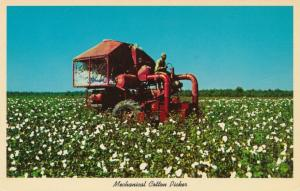 Mechanical Cotton Picker in the South