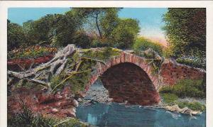 The Ancient Stone Arch Bridge at Old Panama, 10-20s